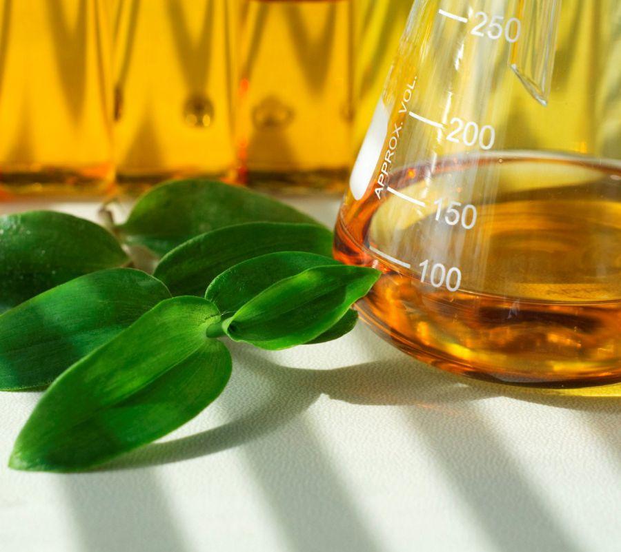 Brasil deve aumentar investimentos em biocombustíveis para cumprir Acordo de Paris